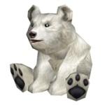 blizzard_cub1